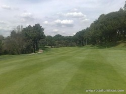 Club de Golf Lomas-bosque