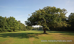 Wimbledon Common Golf Club